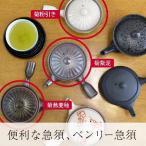 ベンリー急須(菊粉引き/菊蕎麦釉/菊紫泥)(お茶 日本製 贈り物 プレゼント 新築祝い 結婚祝い)