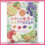 かわごと果実のかわいいのどあめ飴 48袋