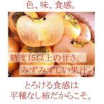 訳あり柿 平たねなし柿 12個 高級2Lサイズ 奈良西吉野産