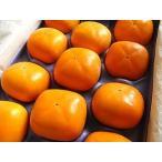 富有柿 贈答用 ギフト 高級 2Lサイズ 11個入り 奈良県産