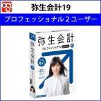 弥生 弥生会計19プロフェッショナル 2ユーザー 通常版<新元号・消費税法改正> YWAM0001