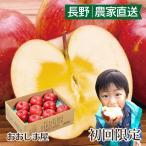 【初回限定】長野県産 蜜入りサンふじりんご 2kg 大小さまざま(5玉-8玉前後) <予約受付:12月上旬より出荷予定> 1回限り 送料無料 大嶌屋(おおしまや)