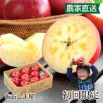 【初回限定】青森 蜜入り葉とらずふじりんご 送料無料 2kg 大小混合 <12月中旬より順次出荷> 1回限り リンゴ フルーツ 果物 大嶌屋(おおしまや)