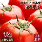 熊本産 塩トマト フルーツトマト 1kg 9〜12玉 甘いトマト 塩とまと 完熟トマト 高糖度 とまと トマト 農家直送 送料無料 大嶌屋(おおしまや)