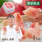 桃 1kg 3玉-6玉 福島 送料無料 もも 菱沼農園 福島の桃 福島県 フルーツ 果物 大嶌屋(おおしまや)