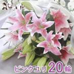 お彼岸  花 お供え ピンク 百合 花束 ゆり20輪  お盆 供花