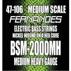 FERNANDES エレキベース弦 BSM2000MH MEDIUM HEAVY .0
