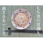 (4個以上購入で送料無料)国産 宮崎県高千穂産 精麦もち麦300g