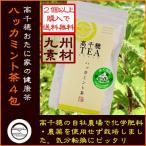 (2個以上購入で送料無料)国産 宮崎県高千穂おたに家の健康ハーブティー 高千穂TEA ハッカミント茶(2.5g×4包入り)ティーパック