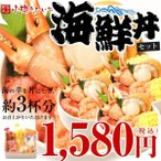 海鮮丼 セット 北海道の味を満喫! ズワイ蟹 いくら 鮭 甘えびが入った北の幸海鮮丼セット 送料無料