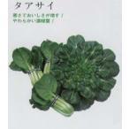 【中国野菜】タアサイ〔固定種〕/小袋