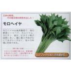 【その他の菜類】モロヘイヤ〔固定種〕/小袋