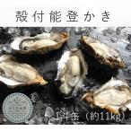 能登かき 殻付(1斗缶 約90個)(牡蠣ナイフ、片手用軍手付)