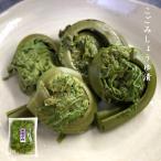 こごみ しょうゆ漬 140g×3パックセット 山菜の漬物 醤油漬
