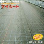 日本ワイドクロス 水稲用育苗下敷きシート マイシート 幅6m(3〜3.5間) 長さ1m単位で指定可能