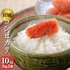 新米 コシヒカリ 10kg(5kg2袋) 宮城県産 令和2年 送料無料(一部除く) 精米 白米