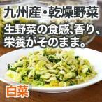 乾燥野菜 白菜 1袋25g 生野菜420g相当 九州産野菜 安心安全国産 長期保存が可能なエアドライ 非常食 保存食 備蓄食