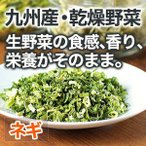 乾燥野菜 ネギ 1袋5g 生野菜100g相当 九州産野菜 安心安全国産 長期保存が可能なエアドライ 非常食 保存食 備蓄食
