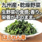 乾燥野菜 ほうれん草 1袋18g 生野菜200g相当 九州産野菜 安心安全国産 長期保存が可能なエアドライ 非常食 保存食 備蓄食