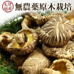 干し椎茸 乾燥椎茸 こどんこ 120g 九州大分県産  国産 しいたけ シイタケ 原木栽培