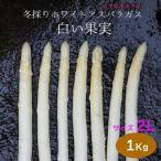 冬採りホワイトアスパラガス「白い果実」 岩手県産 2L 1本35g以上 1Kg(約21~28本) 箱入