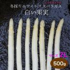 冬採りホワイトアスパラガス 白い果実 2L 500g 1本35g以上 約11〜14本 箱入 岩手県産