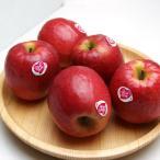 長野県産りんご ピンクレディ リンゴ 約1Kg(4〜6個)条件付き送料無料 希少なリンゴ