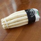 イタリア産 ホワイトアスパラガス 1000g 毎週水曜日入荷