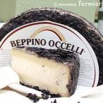 ハード セミハード チーズ オッチェリ テストゥン アル バローロ 約300g イタリア産 毎週火・木曜日発送