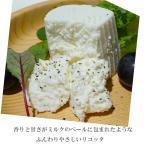 フレッシュチーズ リコッタチーズ 90gx2 イタリア産 月曜締め切り翌々火曜日発送限定 完全予約制