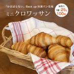 ミニクロワッサン ベイクアップ 25g 100個 冷凍 パン生地 フランス産  【袋入り】
