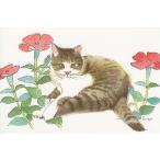 藤重日生 猫絵カード 「フシグロセンソウと猫」 ポストカードサイズ  fuji120022