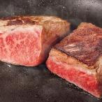 『送料無料』門崎熟成肉(エイジングビーフ)特上赤身肉