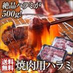 焼肉 ハラミ 250×2 送料無料 このボリュームでこのお値段はお買い得! バーベキュー※5〜10日以内(土・日・祝日を除く)に出荷