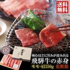 飛騨牛焼肉(もも・かた肉)350g 焼き肉 送料無料 ギフト お中元 お歳暮 ブランド牛