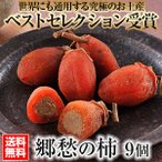 郷愁の柿(9個入)【送料無料】柿の専門 奈良吉野いしい