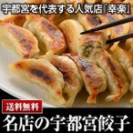 宇都宮 幸楽 こうらく冷凍生餃子5人前×2個 送料無料