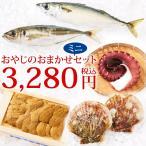 おやじのおまかせミニセット(旬の海鮮 約4種)冷蔵 ☆