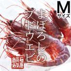 【条件付き送料無料】ブドウエビ Mサイズ(約400g/15