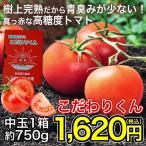 高糖度トマト こだわりくん1箱(約750g)常温 ◯