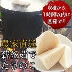 高橋さんの朝掘りたけのこ水煮(たけのこ約600g)常温