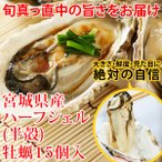 ハーフシェル牡蠣(15個)冷凍 ◯