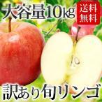 【条件付き送料無料】東北産 訳ありリンゴ(約10kg/目安32~50玉)常温 ★