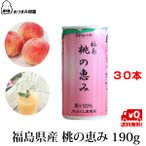 JAふくしま未来 桃の恵み 190g