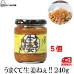 調味料 生姜 うまくて生姜ねぇ 送料無料 240g x 5個 福島 ふくしま