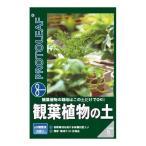 プロトリーフ 観葉植物の土 5L