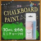 ターナー色彩【チョークボードペイント】全6色 30ml(ミニチョーク付) 黒板になる塗料 水性塗料 リメイク DIY