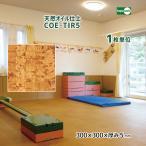 天然オイル仕上 コルクタイル COE-TIR5 【1枚単位】