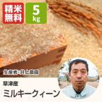 ミルキークイーン(井上農園) 5kg 令和元年 滋賀県産 近江米 - 道の駅草津