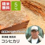 無洗米コシヒカリ(ナカジマファーム) 5kg 平成28年産新米 滋賀県産 近江米 - 道の駅草津